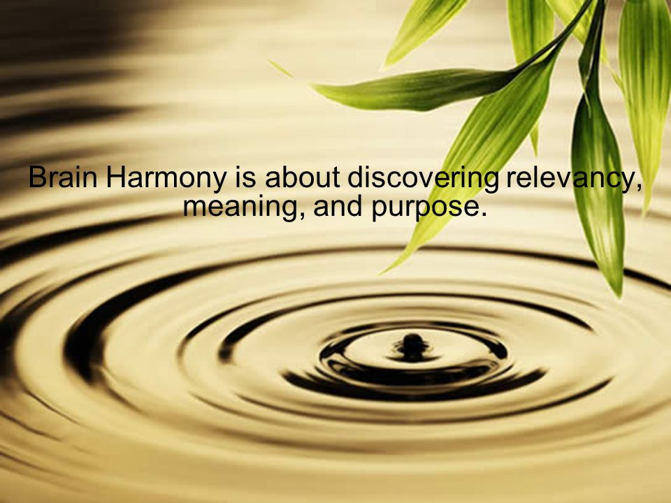 Brain Harmony is about discovering relevancy, meaning, and purpose.