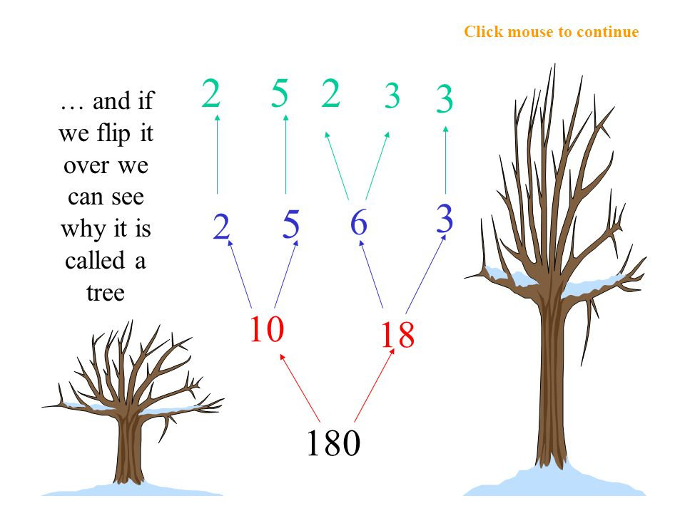 Click mouse to continue 2 3 3 2 5 10 2 6 180 18 3 5 … and if we flip it over we can see why it is called a tree