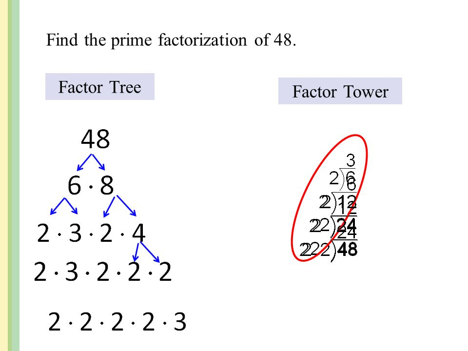 Find the prime factorization of 48. Factor Tree Factor Tower