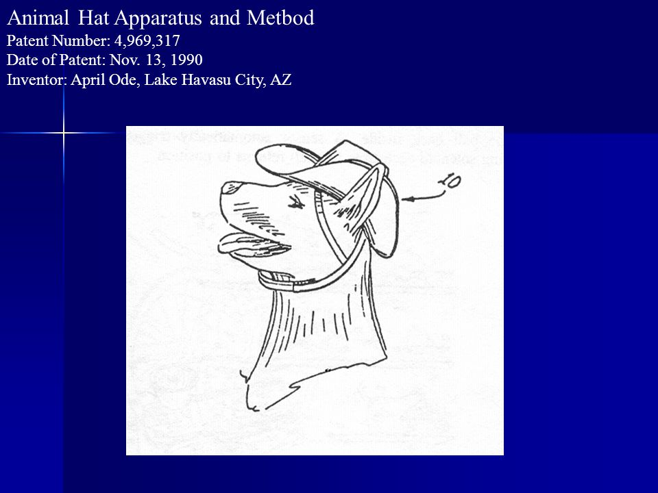 Animal Hat Apparatus and Metbod Patent Number: 4,969,317 Date of Patent: Nov.
