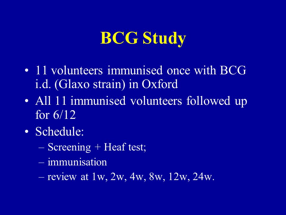 BCG Study 11 volunteers immunised once with BCG i.d.