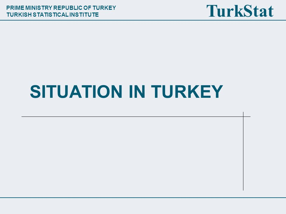 PRIME MINISTRY REPUBLIC OF TURKEY TURKISH STATISTICAL INSTITUTE TurkStat SITUATION IN TURKEY