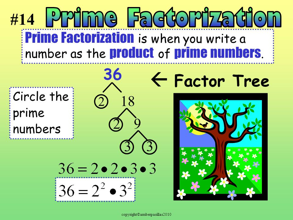 copyright©amberpasillas2010 Prime Factorization is when you write a number as the product of prime numbers.