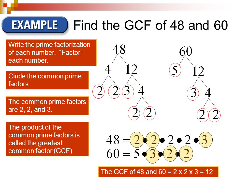 Find the GCF of 48 and 60 Write the prime factorization of each number.