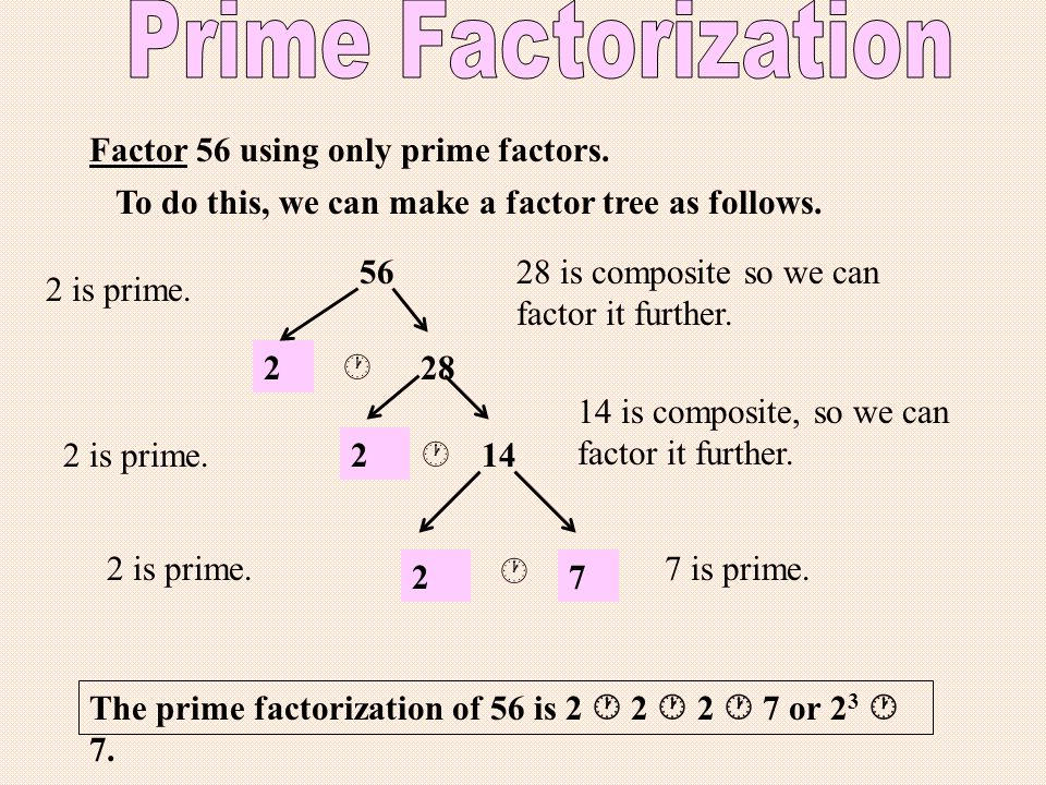 2 Factor 56 using only prime factors. To do this, we can make a factor tree as follows.