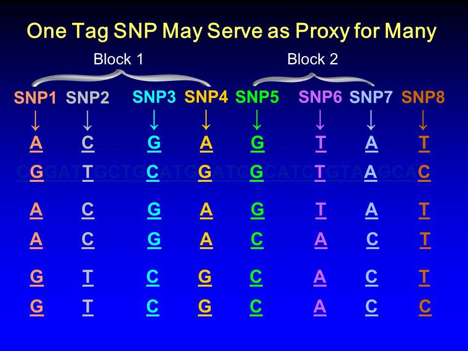 One Tag SNP May Serve as Proxy for Many CAGATCGCTGGATGAATCGCATCTGTAAGCAT CGGATTGCTGCATGGATCGCATCTGTAAGCAC CAGATCGCTGGATGAATCGCATCTGTAAGCAT CAGATCGCTGG