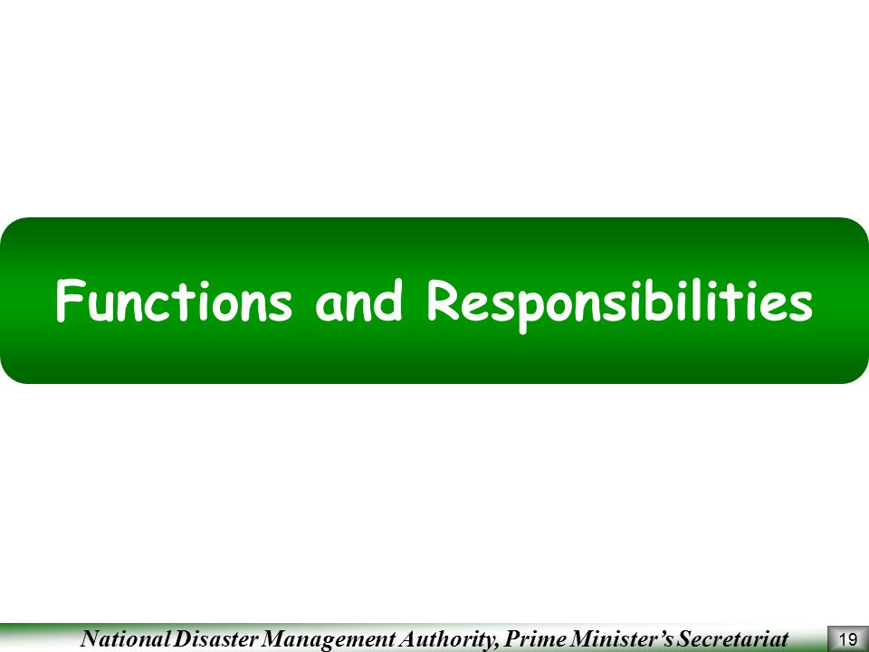 National Disaster Management Authority, Prime Minister's Secretariat 19 Functions and Responsibilities