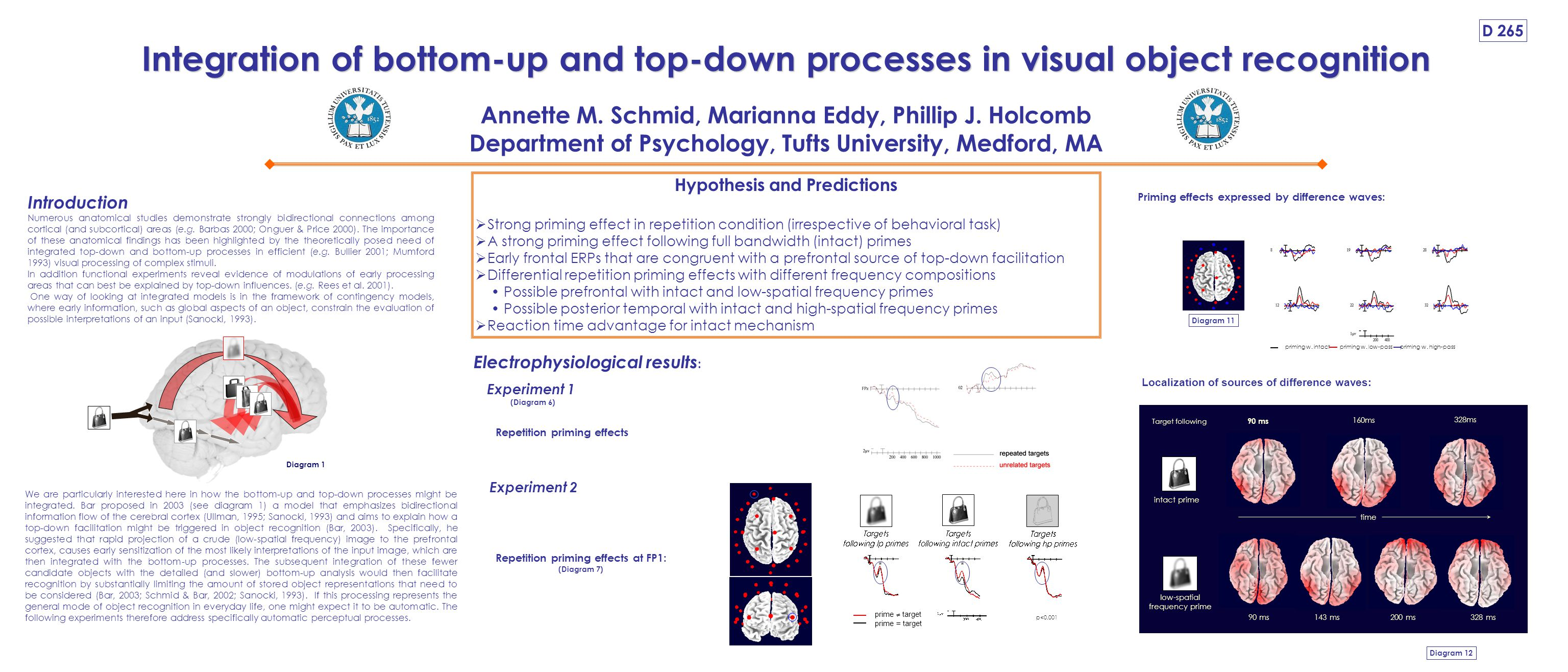 Integration of bottom-up and top-down processes in visual object recognition Annette M.
