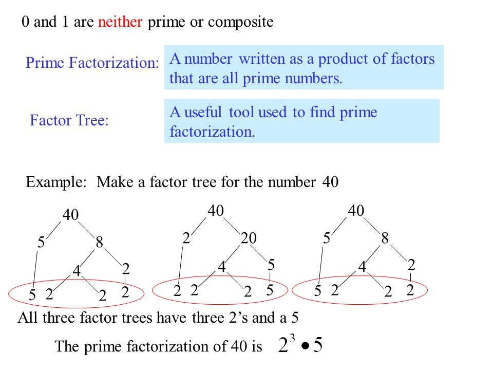 0 and 1 are neither prime or composite Prime Factorization: A number written as a product of factors that are all prime numbers. Factor Tree: A useful