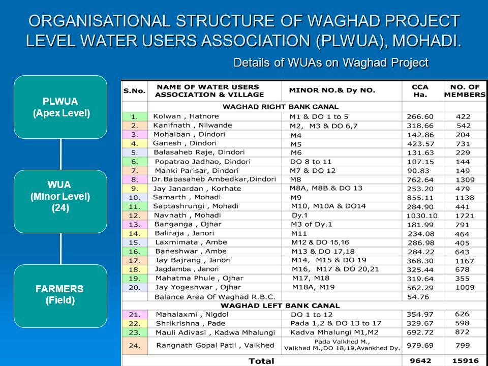 WRD,GoM PLWUA WUA Farmer Waghad Dam Waghad Canal Minor of Waghad Canal Field Channel DISTRIBUTIONNETWORK MANAGEMENT