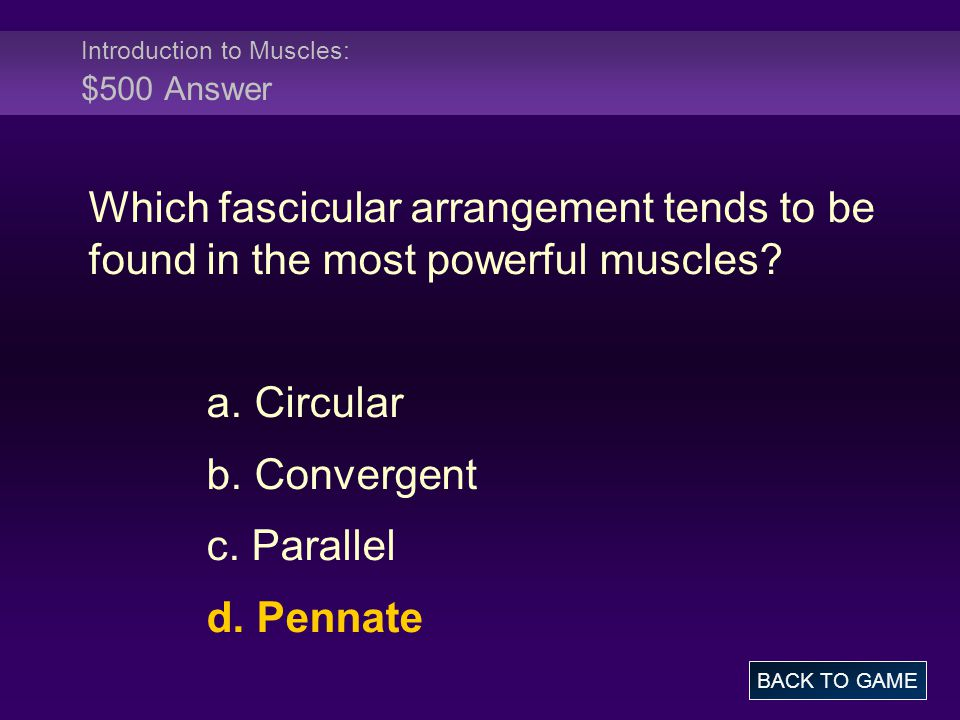 Introduction to Muscles: $500 Answer Which fascicular arrangement tends to be found in the most powerful muscles.