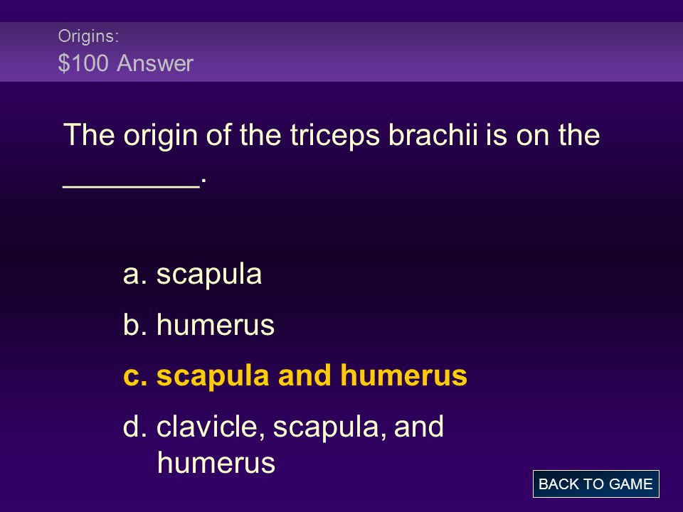 Origins: $100 Answer The origin of the triceps brachii is on the ________.