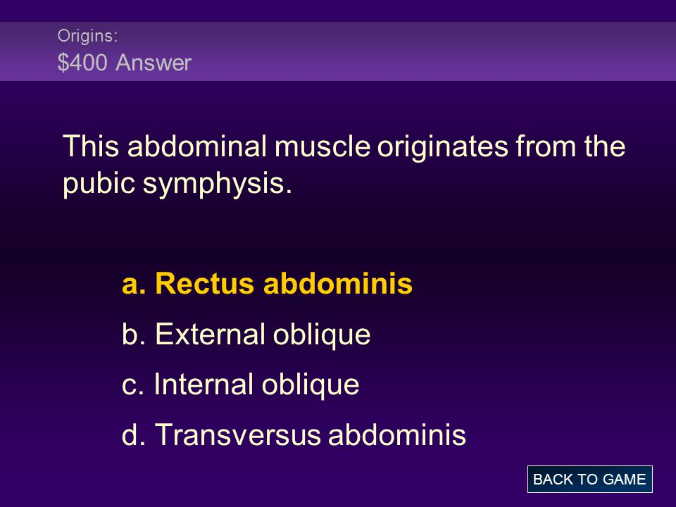 Origins: $400 Answer This abdominal muscle originates from the pubic symphysis.