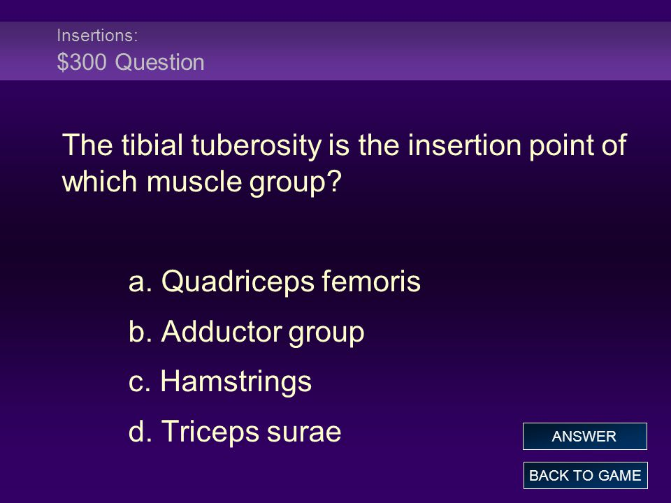 Insertions: $300 Question The tibial tuberosity is the insertion point of which muscle group.