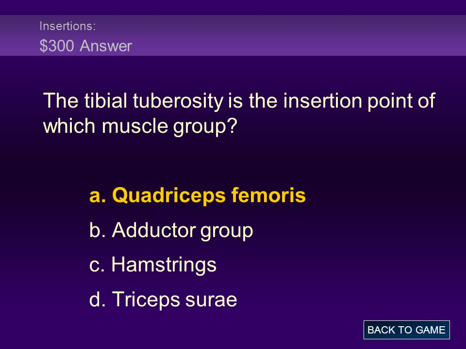 Insertions: $300 Answer The tibial tuberosity is the insertion point of which muscle group.