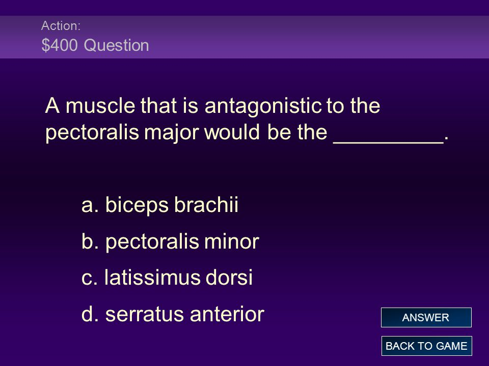 Action: $400 Question A muscle that is antagonistic to the pectoralis major would be the _________.