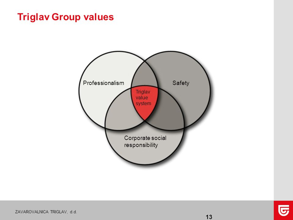 ZAVAROVALNICA TRIGLAV, d.d. Triglav Group values 13 ProfessionalismSafety Corporate social responsibility Triglav value system
