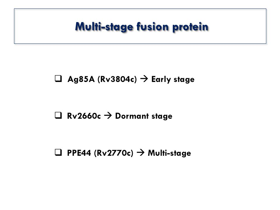  Ag85A (Rv3804c)  Early stage  Rv2660c  Dormant stage  PPE44 (Rv2770c)  Multi-stage Multi-stage fusion protein Multi-stage fusion protein