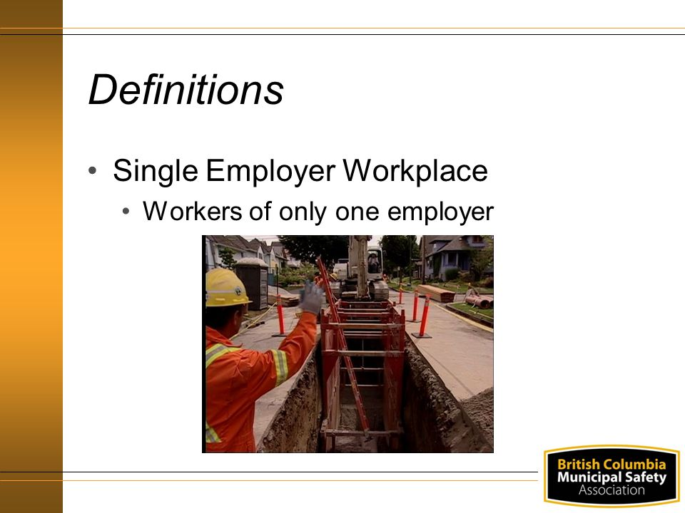 Definitions Single Employer Workplace Workers of only one employer