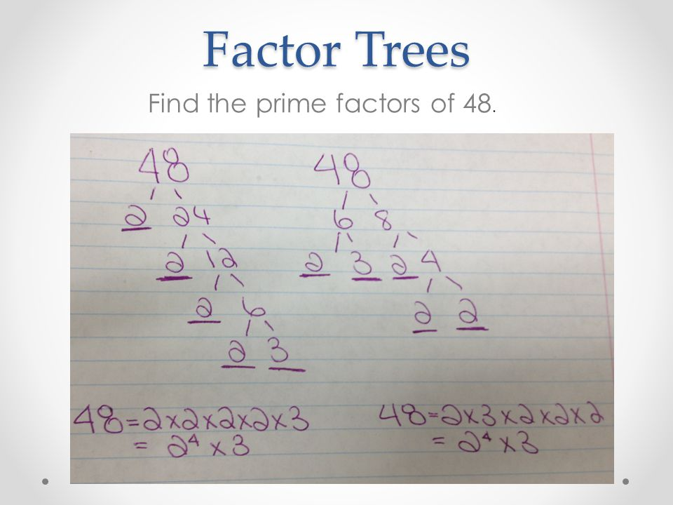 Factor Trees Find the prime factors of 48.