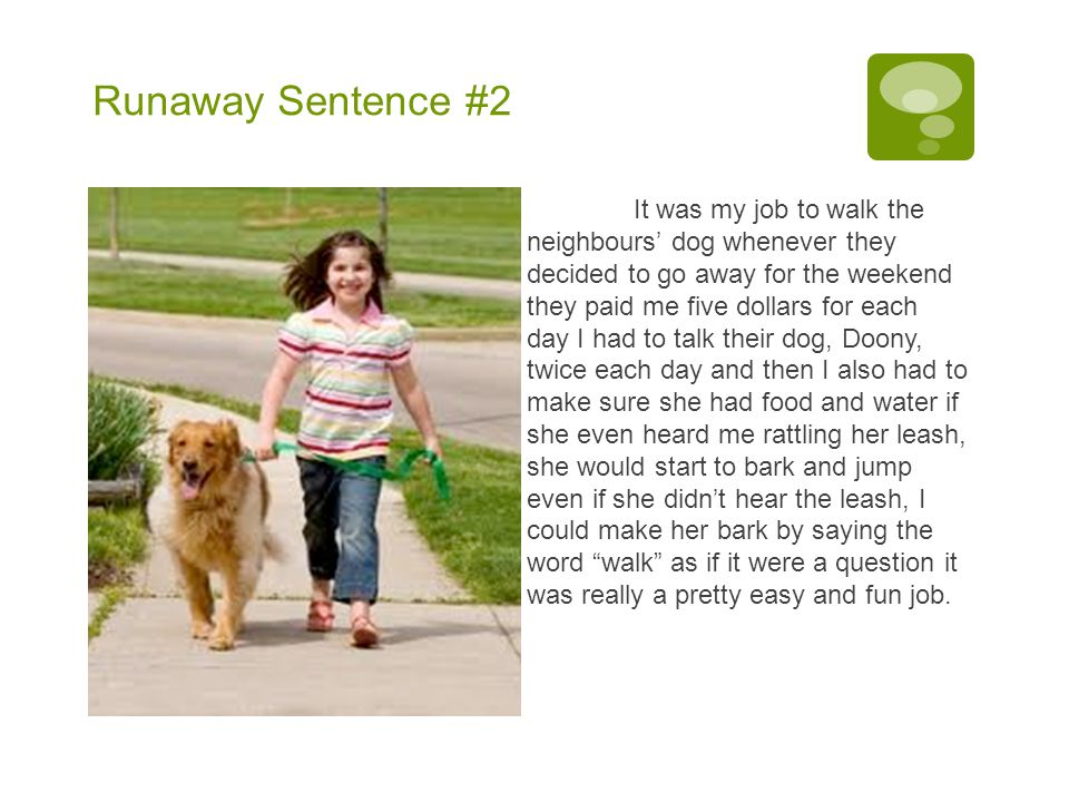 Runaway Sentence #2 It was my job to walk the neighbours' dog whenever they decided to go away for the weekend they paid me five dollars for each day I had to talk their dog, Doony, twice each day and then I also had to make sure she had food and water if she even heard me rattling her leash, she would start to bark and jump even if she didn't hear the leash, I could make her bark by saying the word walk as if it were a question it was really a pretty easy and fun job.
