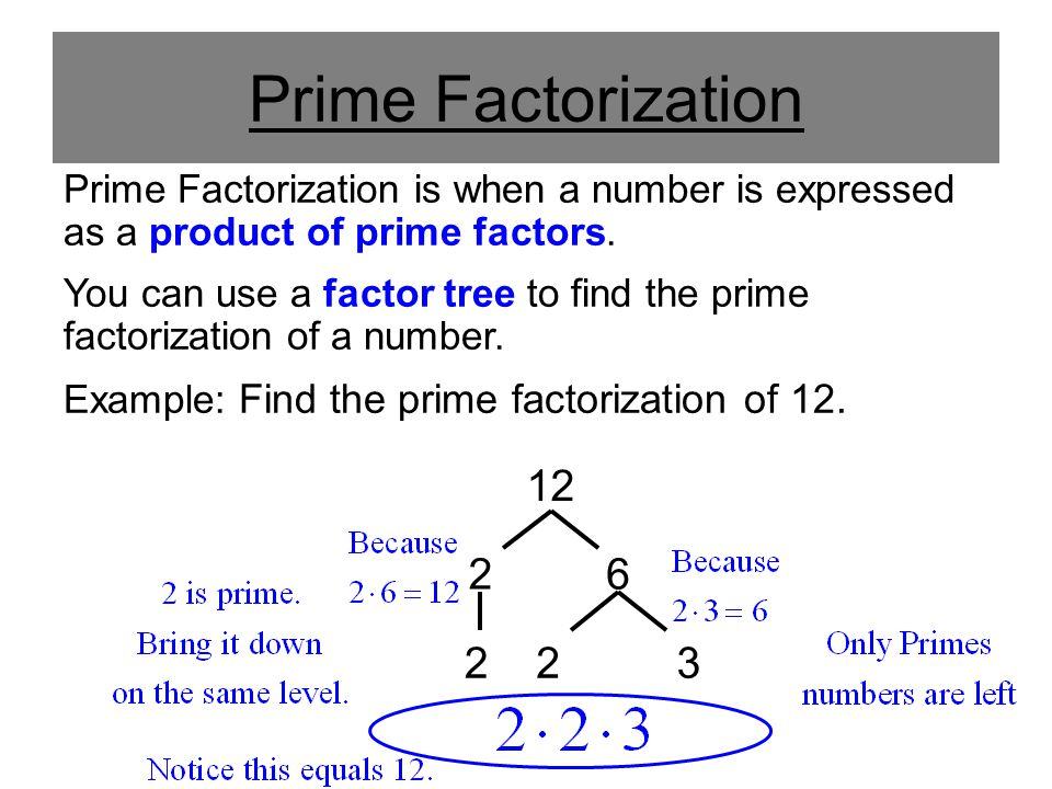 Prime Factorization Prime Factorization is when a number is expressed as a product of prime factors. You can use a factor tree to find the prime facto
