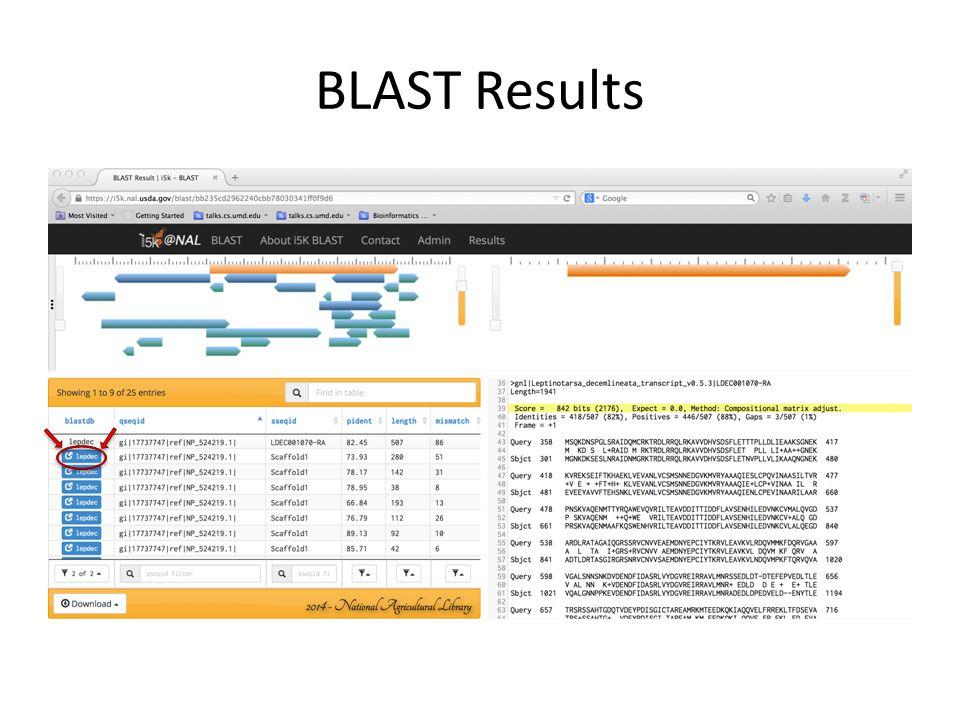 BLAST Results