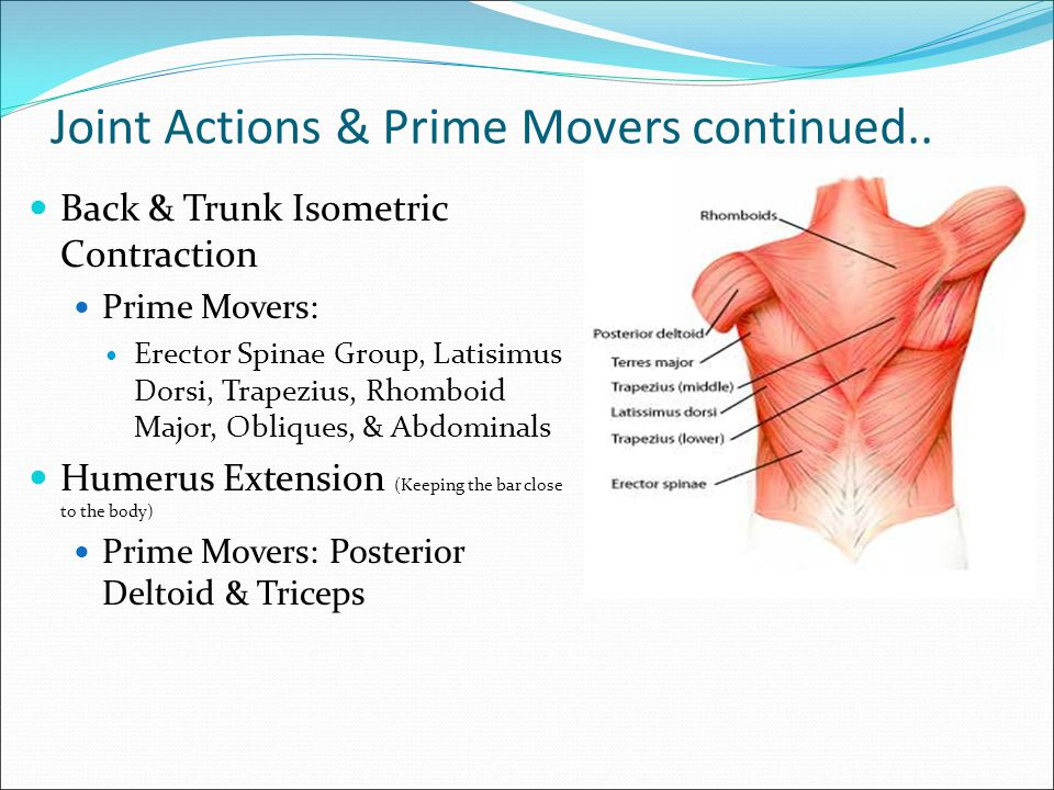 Joint Actions and Prime Movers 1.