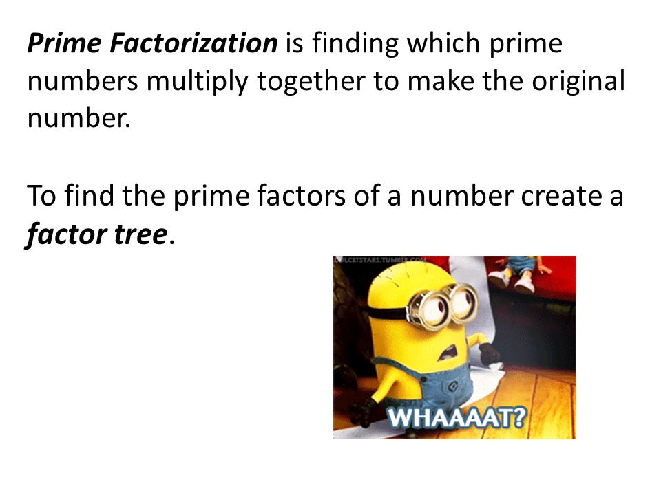 Prime Factorization is finding which prime numbers multiply together to make the original number.