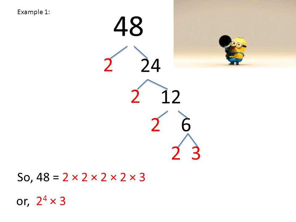 Whiteboard time: 36 2 18 2 9 33 So, 36 = 2 × 2 × 3 × 3 or, 2 2 × 3 2