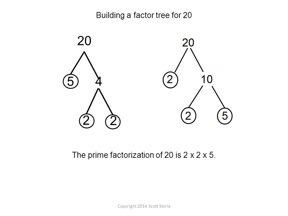 Building a factor tree for 20 The prime factorization of 20 is 2 x 2 x 5.