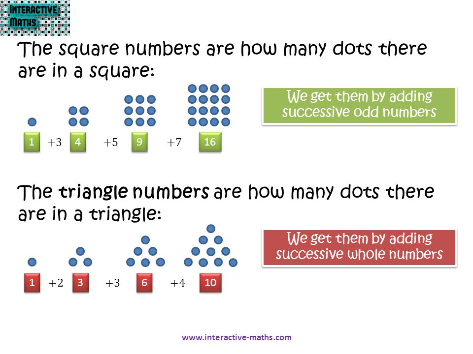 The square numbers are how many dots there are in a square: The triangle numbers are how many dots there are in a triangle: 1 1 4 4 9 9 16 1 1 3 3 6 6