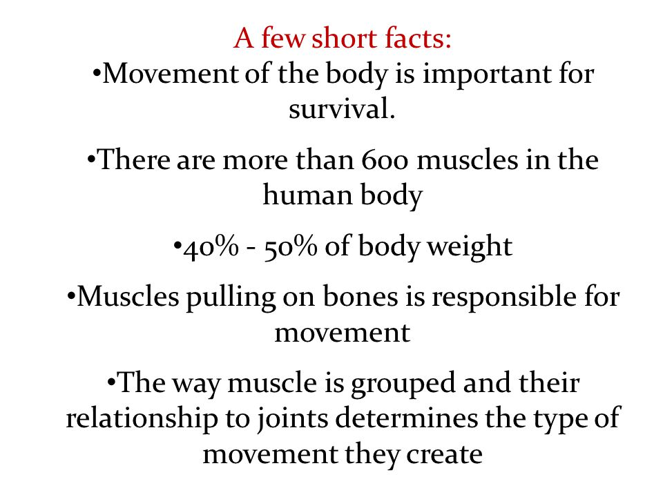 Names for the attachments of muscles Origin The point of attachment that does not move when the muscle contracts Insertion The point of attachment that moves when the muscle contracts
