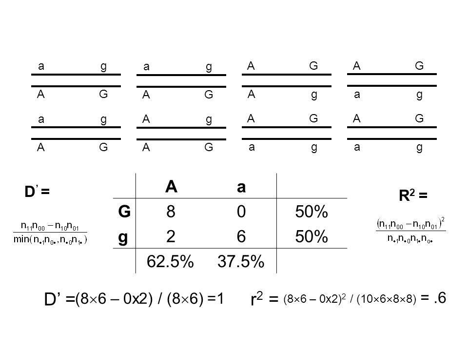 AG ag AG ag Ag AG ag AG AG ag AG Ag ag AG ag AG Aa G8050% g26 62.5%37.5% D' = (8  6 – 0x2) / (8  6) =1 r 2 = (8  6 – 0x2) 2 / (10  6  8  8) =.6 R 2 = D ' =
