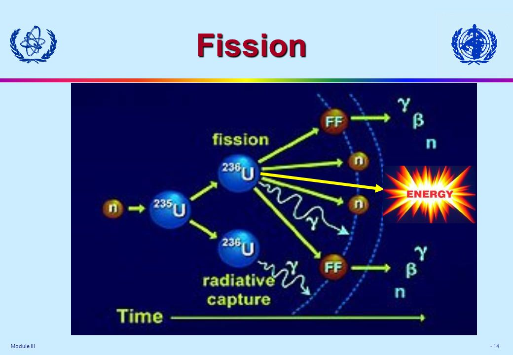 Module III - 14 Fission