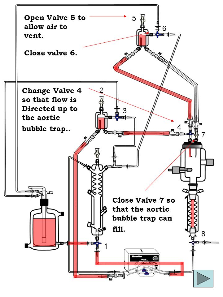 1 2 4 5 3 6 8 7 Change Valve 4 so that flow is Directed up to the aortic bubble trap..