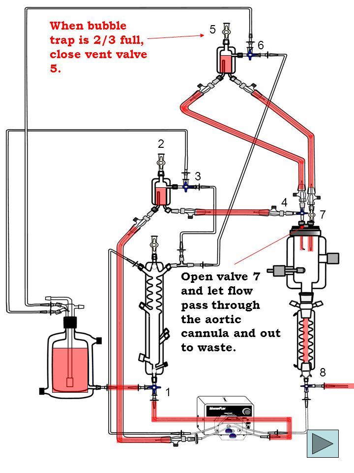 1 2 4 5 3 6 8 7 When bubble trap is 2/3 full, close vent valve 5.