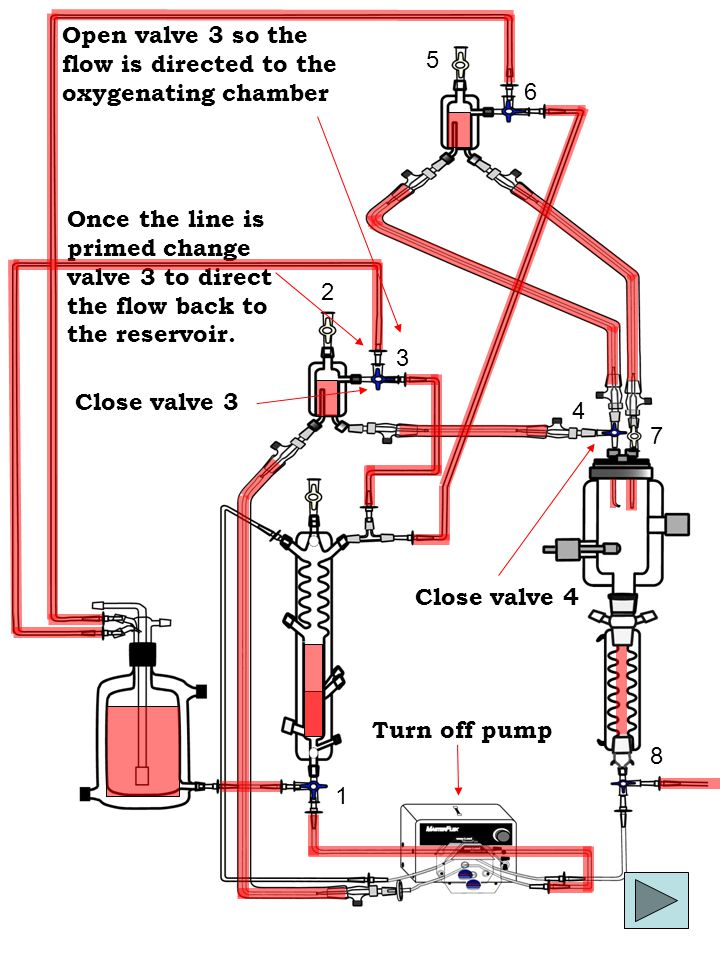 1 2 4 5 3 6 8 7 Close valve 4 Open valve 3 so the flow is directed to the oxygenating chamber Once the line is primed change valve 3 to direct the flow back to the reservoir.