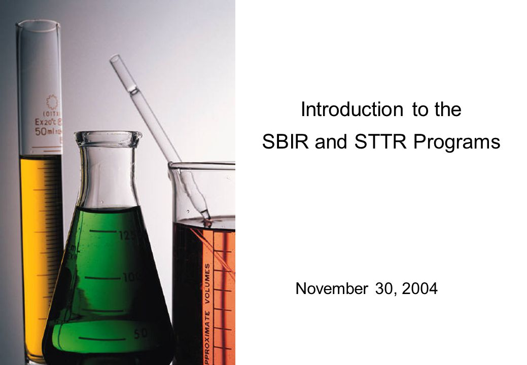 Introduction to the SBIR and STTR Programs November 30, 2004