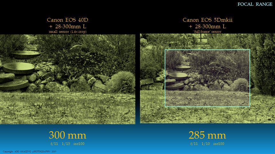 AVAILABLE FOCAL RANGE 300 mm f/11 1/15 iso100 285 mm f/11 1/10 iso100 Copyright zOO iMAGING pHOTOGRAPHY 2010 FOCAL RANGE Canon EOS 5Dmkii + 28-300mm L 'full frame' sensor Canon EOS 40D + 28-300mm L small sensor (1.6x crop)