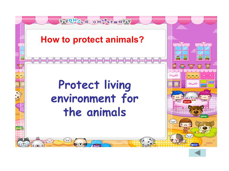 Protect living environment for the animals How to protect animals?