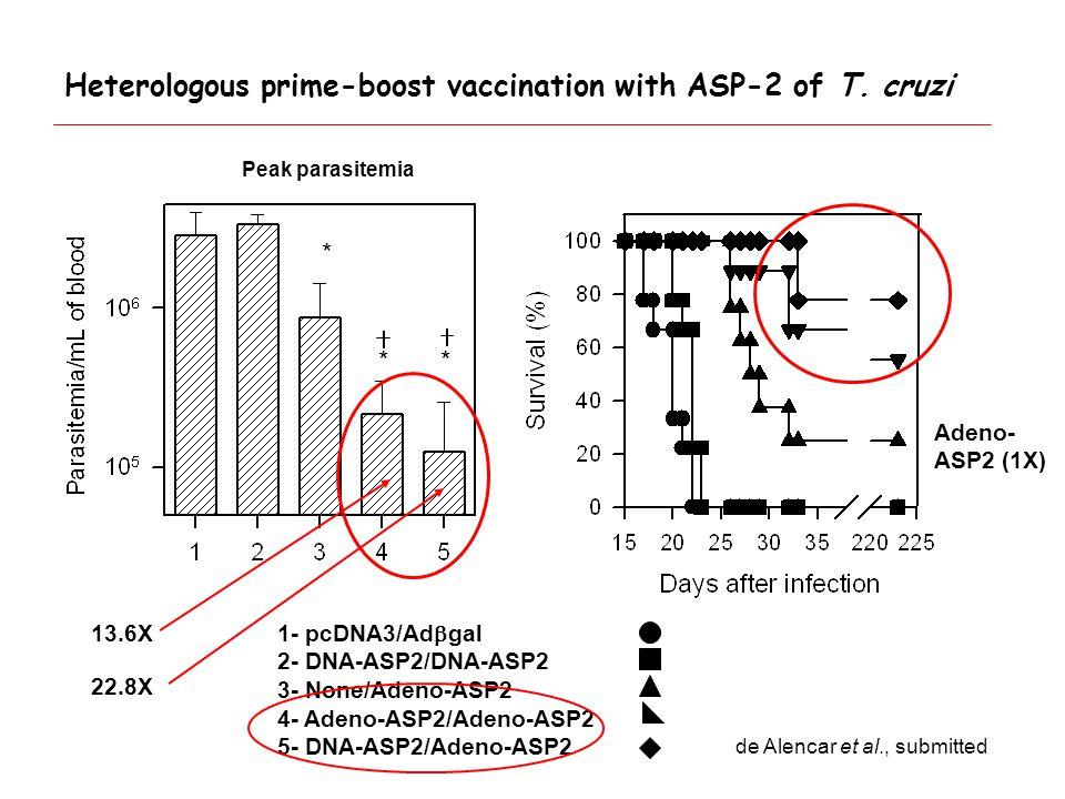 1- pcDNA3/Ad  gal 2- DNA-ASP2/DNA-ASP2 3- None/Adeno-ASP2 4- Adeno-ASP2/Adeno-ASP2 5- DNA-ASP2/Adeno-ASP2 ** * Heterologous prime-boost vaccination with ASP-2 of T.