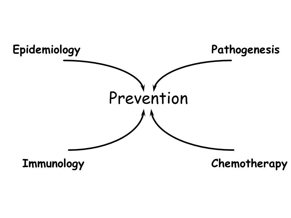 EpidemiologyPathogenesis ImmunologyChemotherapy Prevention