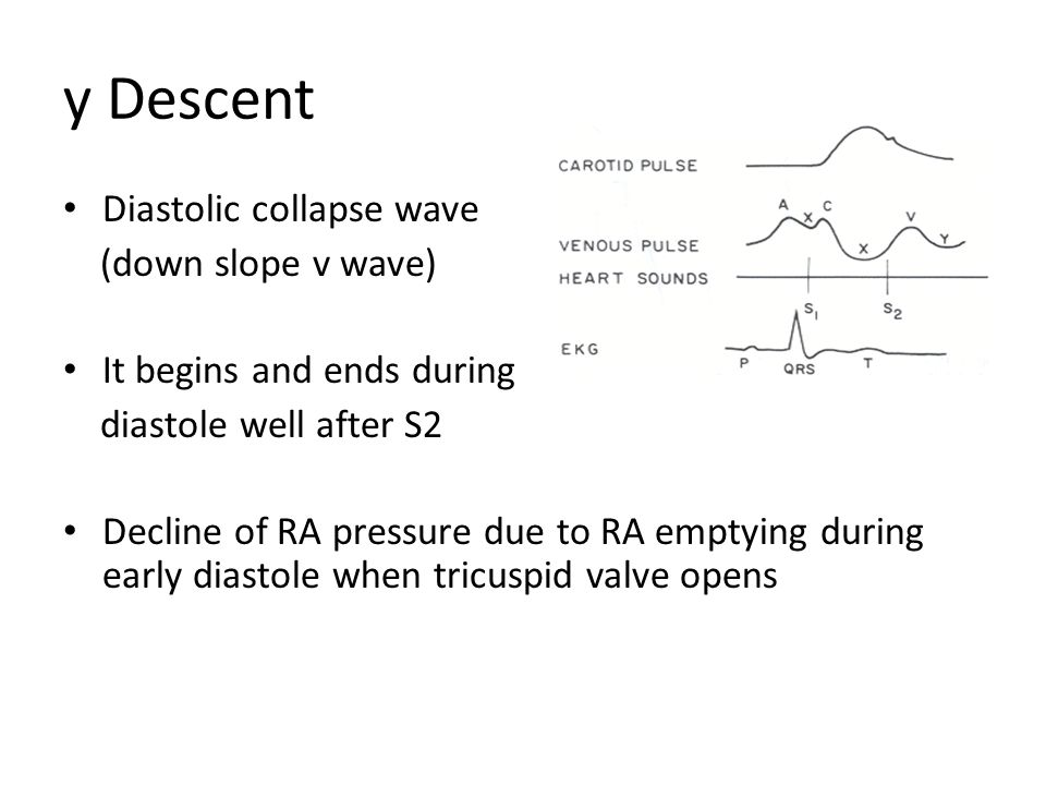 y Descent Diastolic collapse wave (down slope v wave) It begins and ends during diastole well after S2 Decline of RA pressure due to RA emptying durin
