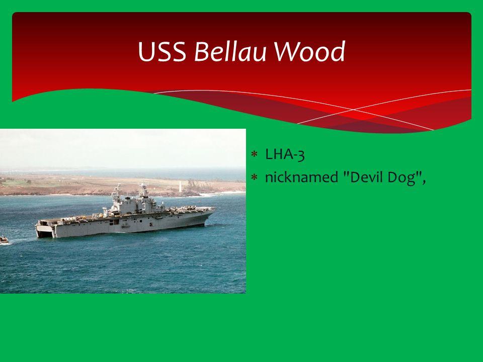 USS Bellau Wood  LHA-3  nicknamed