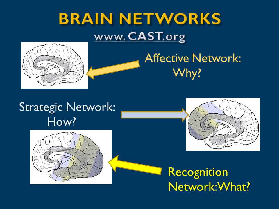 Affective Network: Why Strategic Network: How Recognition Network: What