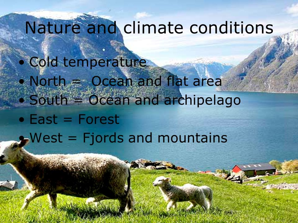 Nature and climate conditions Cold temperature North = Ocean and flat area South = Ocean and archipelago East = Forest West = Fjords and mountains
