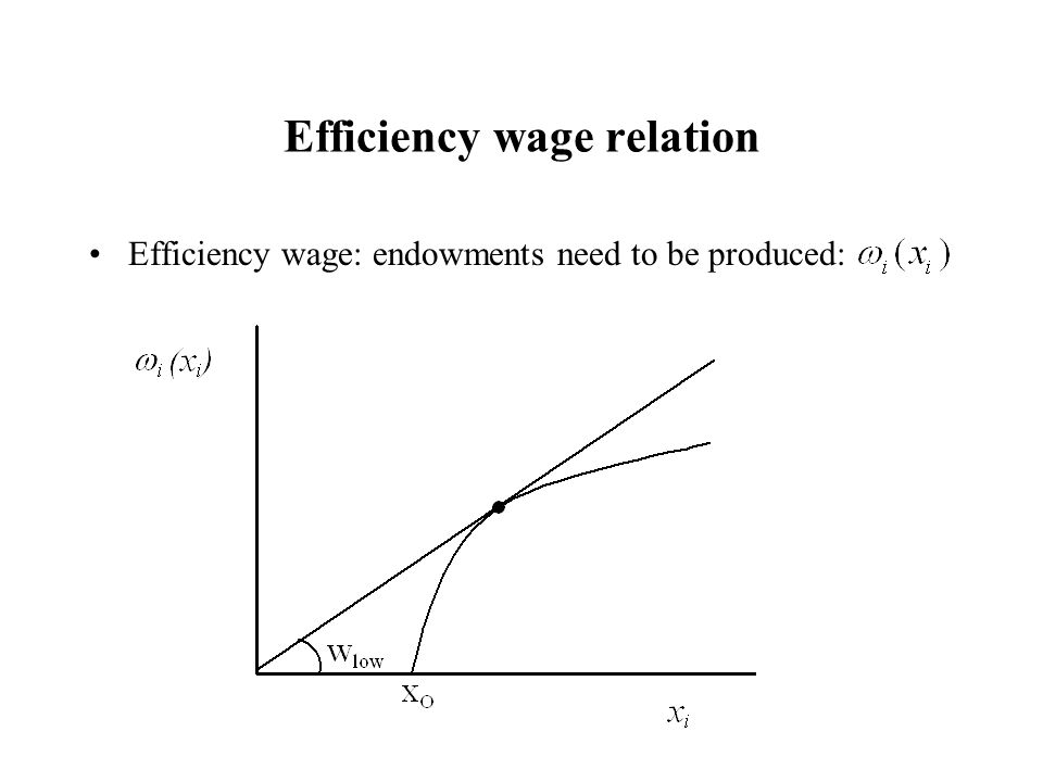 Efficiency wage relation Efficiency wage: endowments need to be produced: