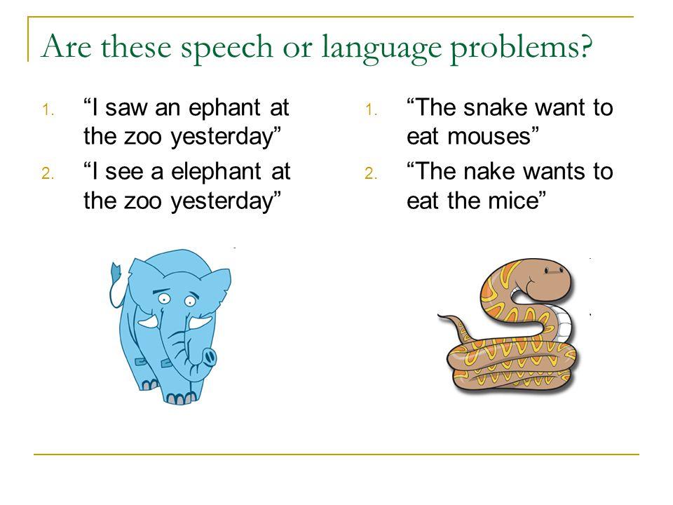 What problems do speech pathologists treat.