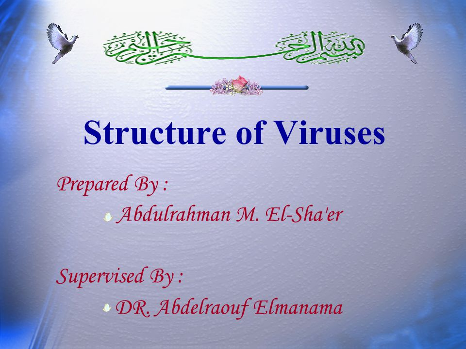 Structure of Viruses Prepared By : Abdulrahman M. El-Sha'er Supervised By : DR. Abdelraouf Elmanama